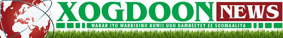 XOG-DOON NEWS