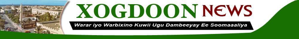 XOG-DOON NEWS logo
